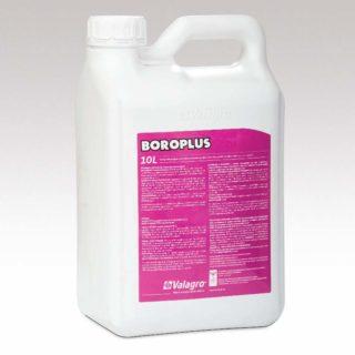 Boroplus 10 l 800×800