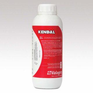 Kendal 1 l 800×800