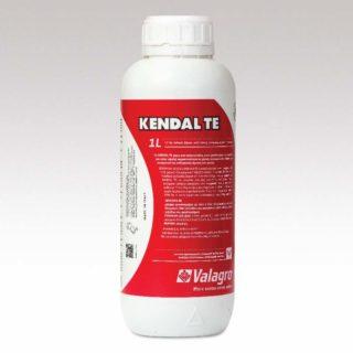 Kendal TE 1 l 800×800